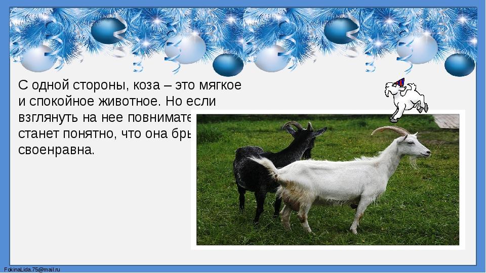 С одной стороны, коза – это мягкое и спокойное животное. Но если взглянуть на...