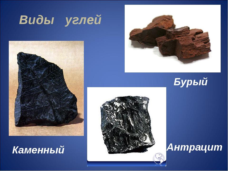 Виды углей Бурый Каменный Антрацит