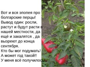 Вот и вся эпопея про болгарские перцы! Вывод один: росли, растут и будут раст