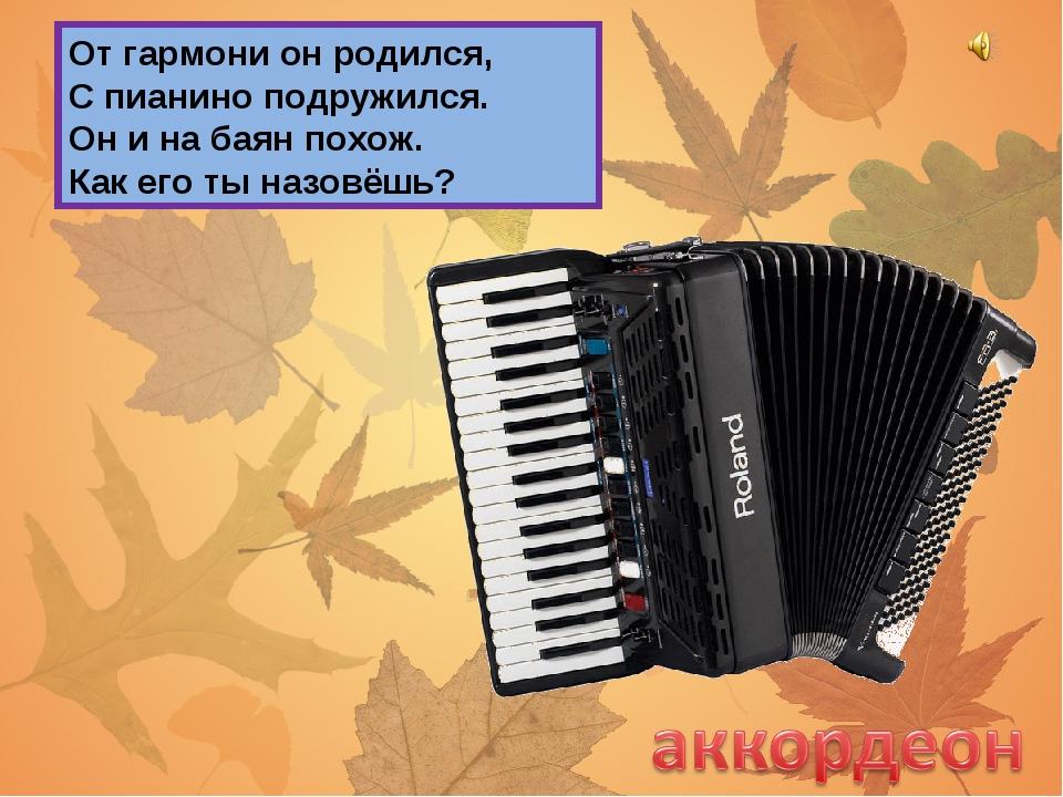 От гармони он родился, С пианино подружился. Он и на баян похож. Как его ты н...