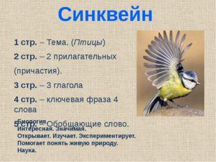 Синквейн 1 стр. – Тема. (Птицы) 2 стр. – 2 прилагательных (причастия). 3 стр.