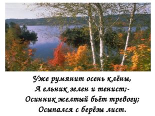Уже румянит осень клёны, А ельник зелен и тенист;- Осинник желтый бьёт трево