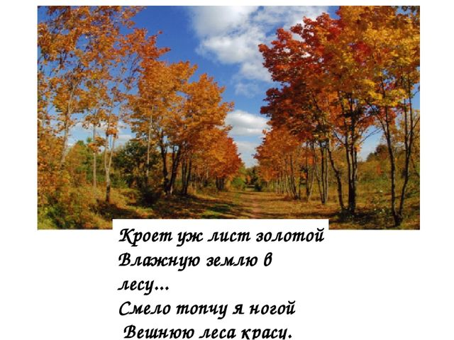 Кроет уж лист золотой Влажную землю в лесу... Смело топчу я ногой Вешнюю леса...