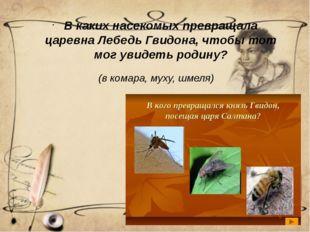 (в комара, муху, шмеля) В каких насекомых превращала царевна Лебедь Гвидона,