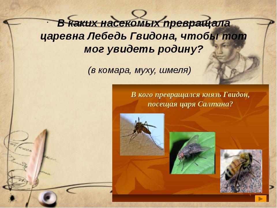 (в комара, муху, шмеля) В каких насекомых превращала царевна Лебедь Гвидона,...