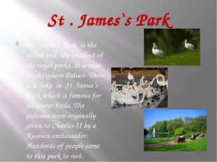 St . James`s Park St . James`s Park is the oldest and the smallest of the roy