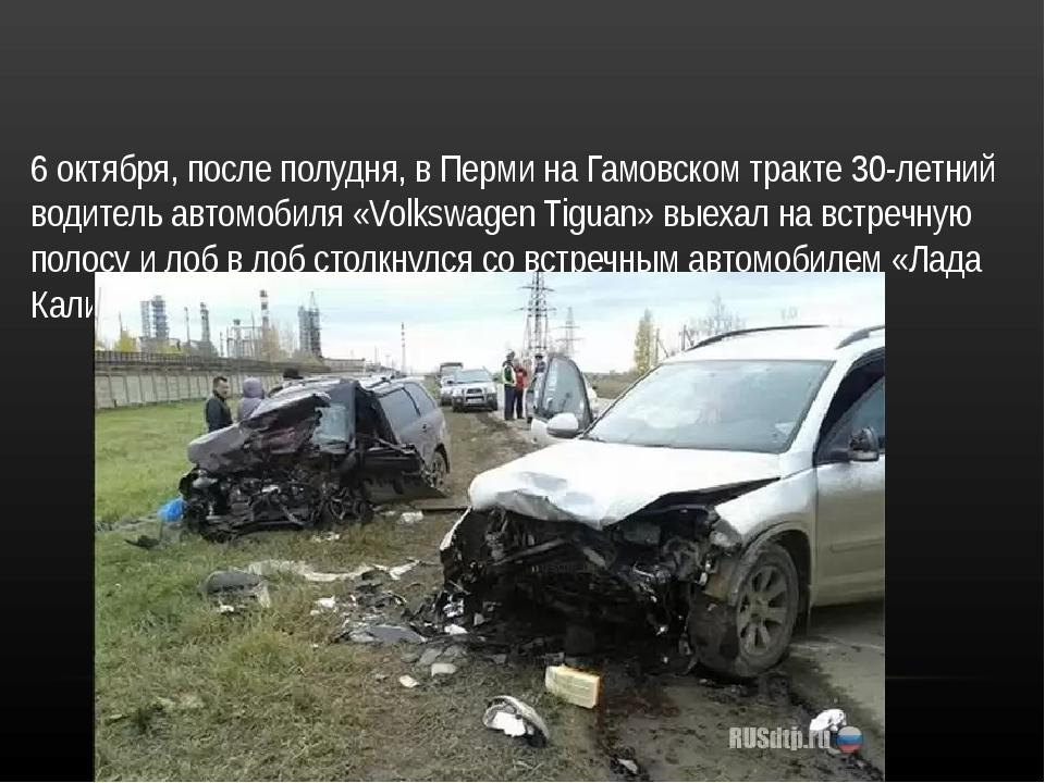 6 октября, после полудня, в Перми на Гамовском тракте 30-летний водитель авто...