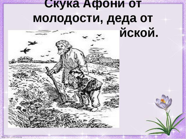 Скука Афони от молодости, деда от мудрости житейской. http://linda6035.ucoz.ru/