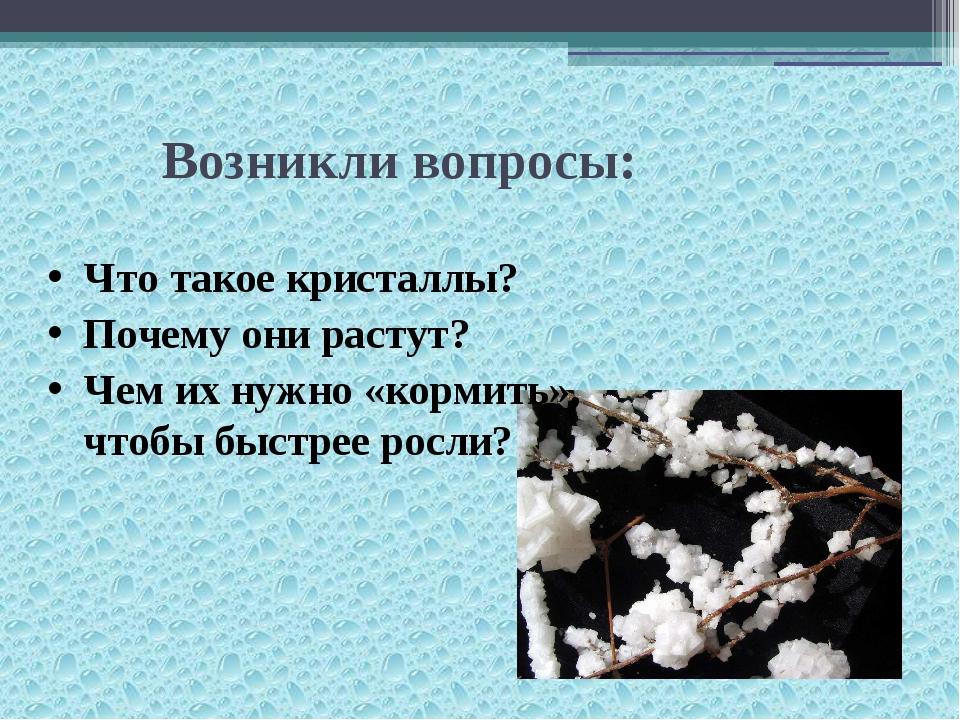 Возникли вопросы: Что такое кристаллы? Почему они растут? Чем их нужно «корм...