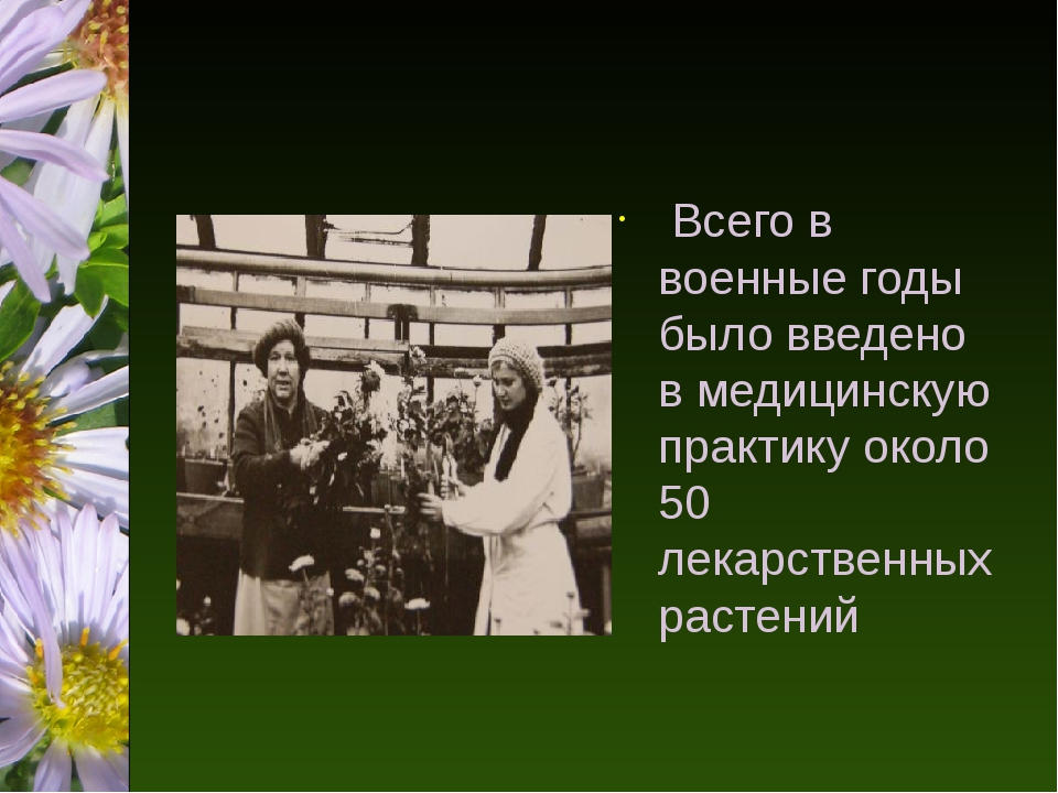 Всего в военные годы было введено в медицинскую практику около 50 лекарствен...