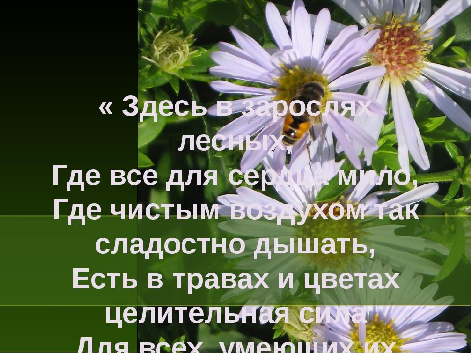 « Здесь в зарослях лесных, Где все для сердца мило, Где чистым воздухом так с...