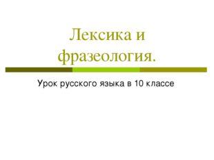 Лексика и фразеология. Урок русского языка в 10 классе