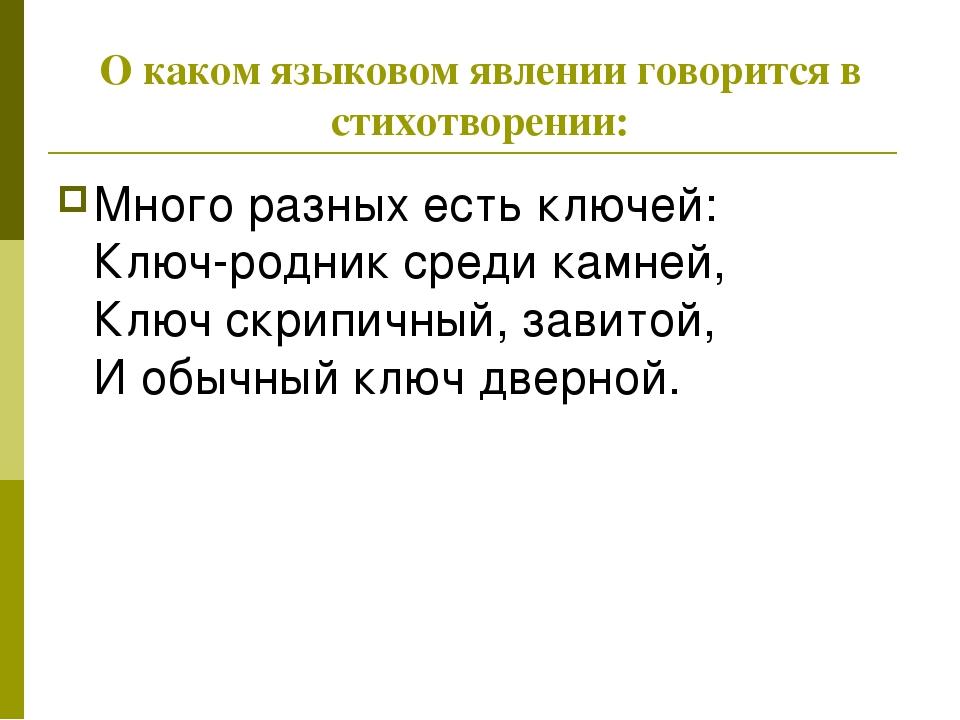 О каком языковом явлении говорится в стихотворении: Много разных есть ключей...