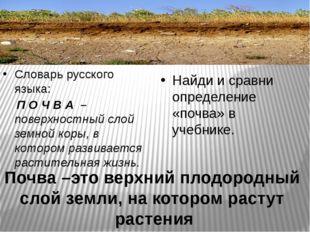 Словарь русского языка: П О Ч В А – поверхностный слой земной коры, в которо