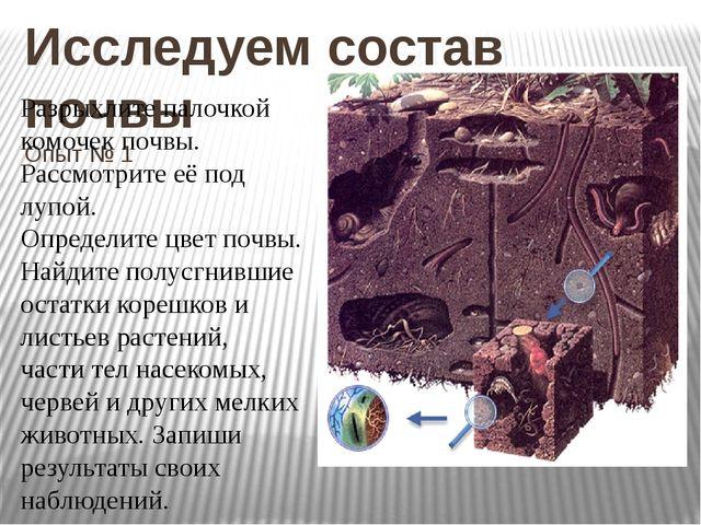 Исследуем состав почвы Опыт № 1 Разрыхлите палочкой комочек почвы. Рассмотрит...