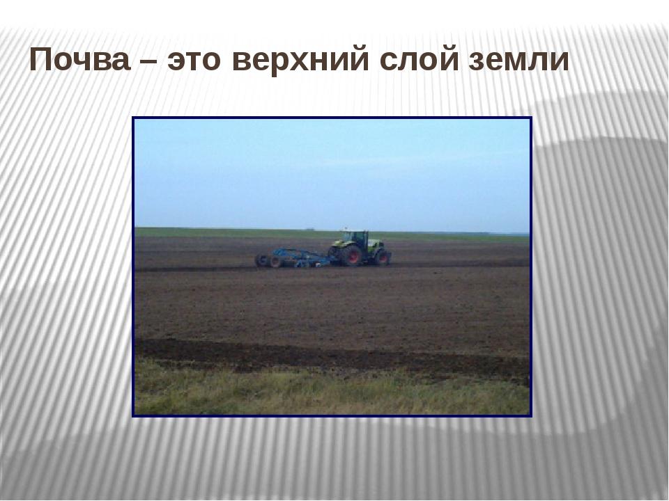 Почва – это верхний слой земли