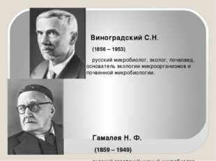Виноградский С.Н. (1856 – 1953) русский микробиолог, эколог, почвовед, основ