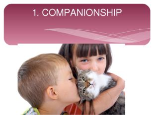 1. COMPANIONSHIP