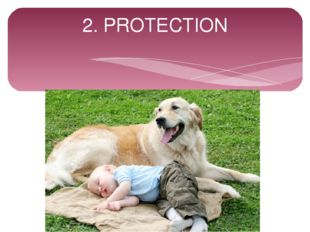 2. PROTECTION