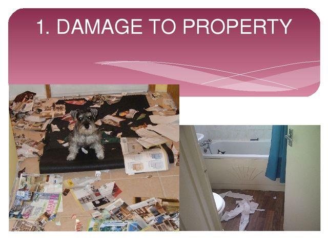1. DAMAGE TO PROPERTY