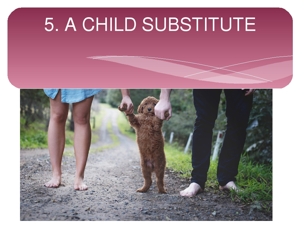 5. A CHILD SUBSTITUTE