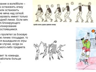 7. Блокирование в волейболе – это попытка остановить атаку соперника или оста