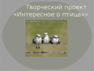 Творческий проект «Интересное о птицах»