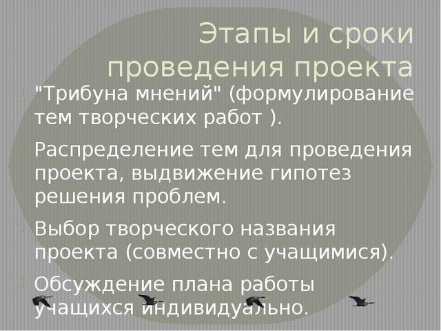 """Этапы и сроки проведения проекта """"Трибуна мнений"""" (формулирование тем творчес..."""