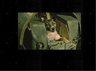 Кто был первым на орбите Земли? 3 ноября 1957 года был запущен второй советск