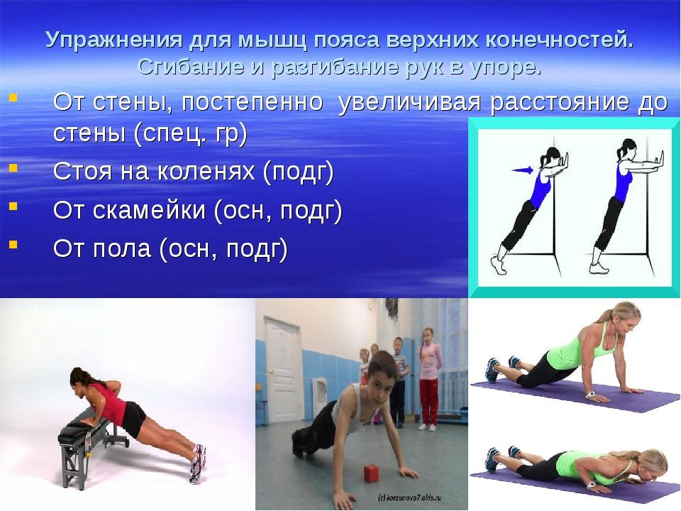 Упражнения для мышц пояса верхних конечностей. Сгибание и разгибание рук в уп...