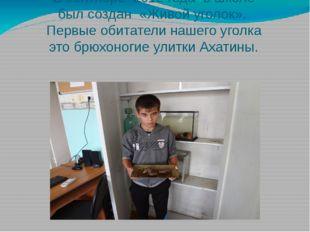 В сентябре 2012 года в школе был создан «Живой уголок». Первые обитатели наше