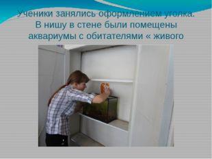 Ученики занялись оформлением уголка. В нишу в стене были помещены аквариумы с