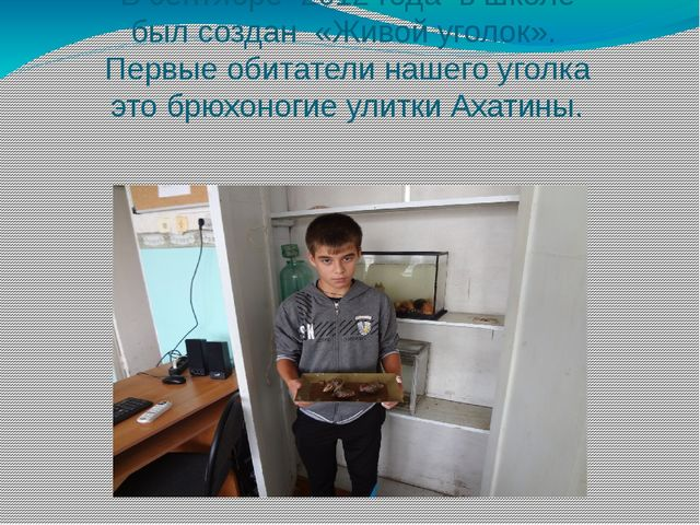 В сентябре 2012 года в школе был создан «Живой уголок». Первые обитатели наше...