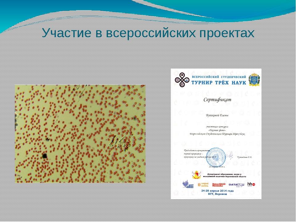 Участие в всероссийских проектах