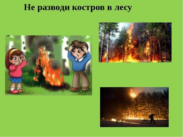 Не разводи костров в лесу