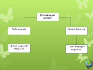 Географиялық зоналық Биіктік белдеулік Ендік зоналық Жазық жерлерде таралған.