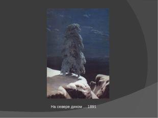 На севере диком ....1891