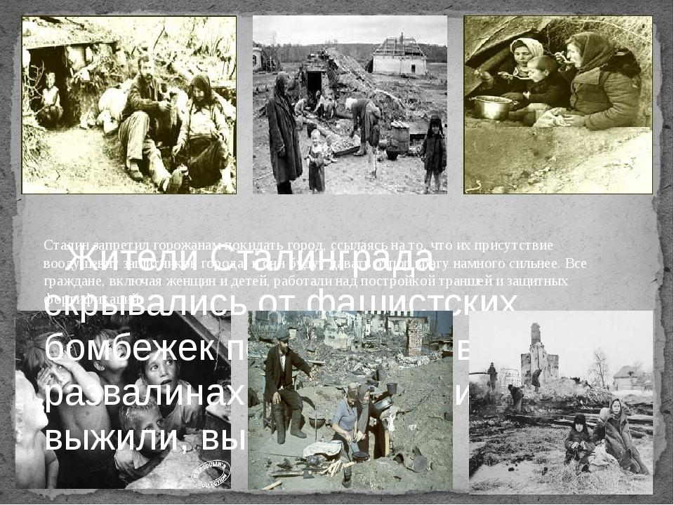 Жители Сталинграда скрывались от фашистских бомбежек под землей, в развалина...