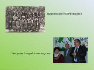 Щербаков Валерий Федорович Егорушин Валерий Александрович
