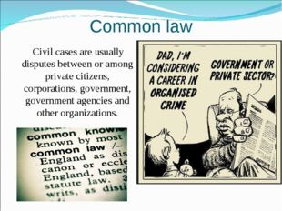 Common law Civil cases are usually disputes between or among private citizens