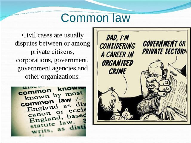Common law Civil cases are usually disputes between or among private citizens...