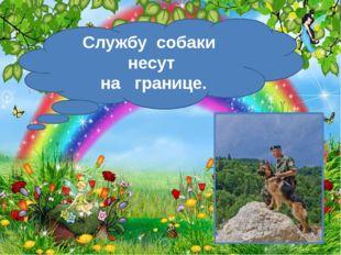 http://aida.ucoz.ru Службу собаки несут на границе.