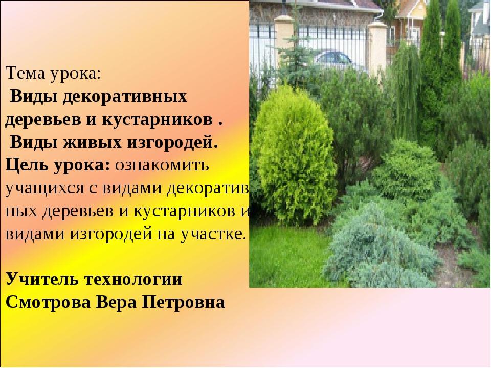 Тема урока: Виды декоративных деревьев и кустарников . Виды живых изгородей....