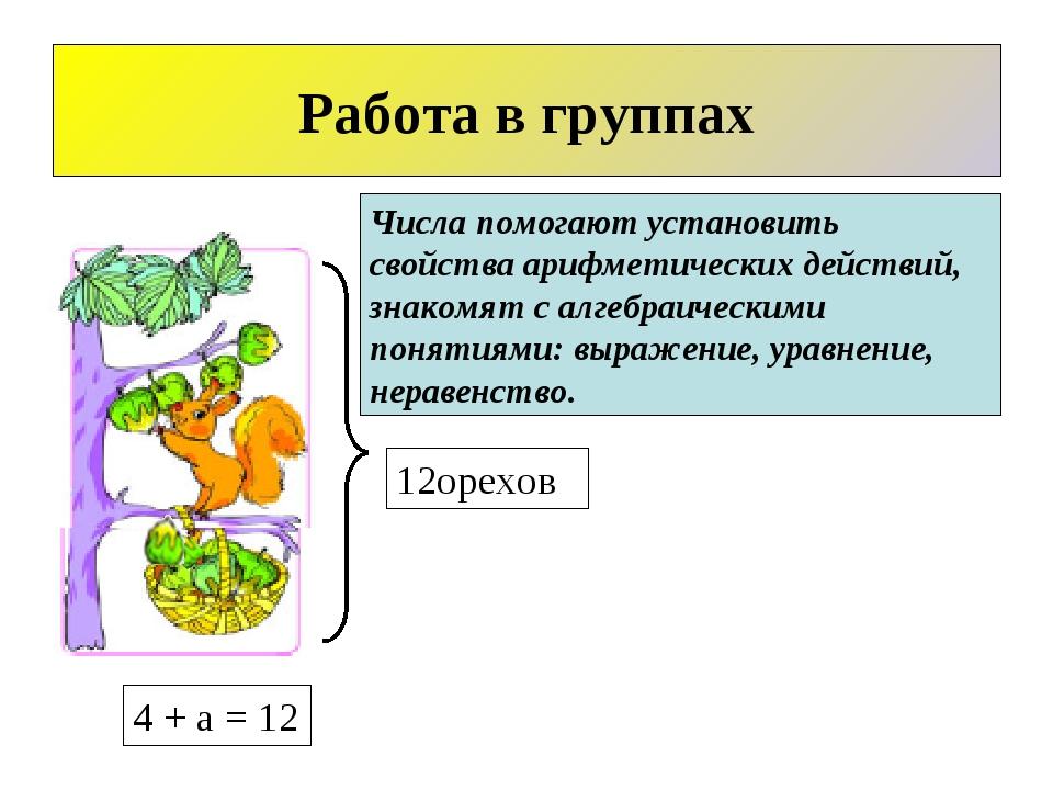12орехов Работа в группах 4 + а = 12 Числа помогают установить свойства арифм...