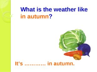 What is the weather like in autumn? It's ………… in autumn.