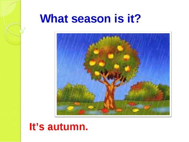 What season is it? It's autumn.