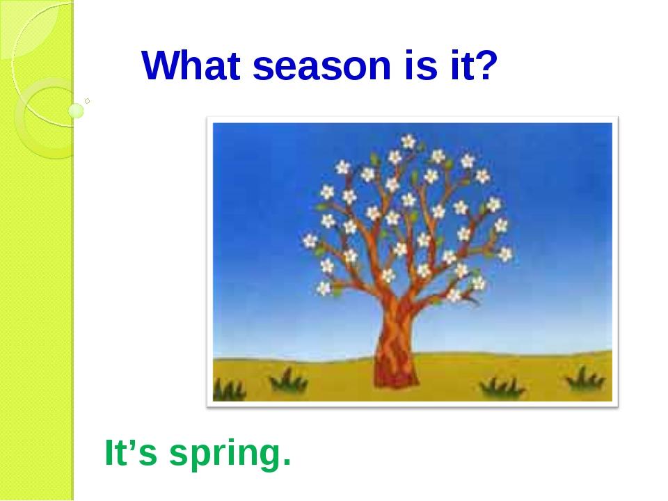 What season is it? It's spring.