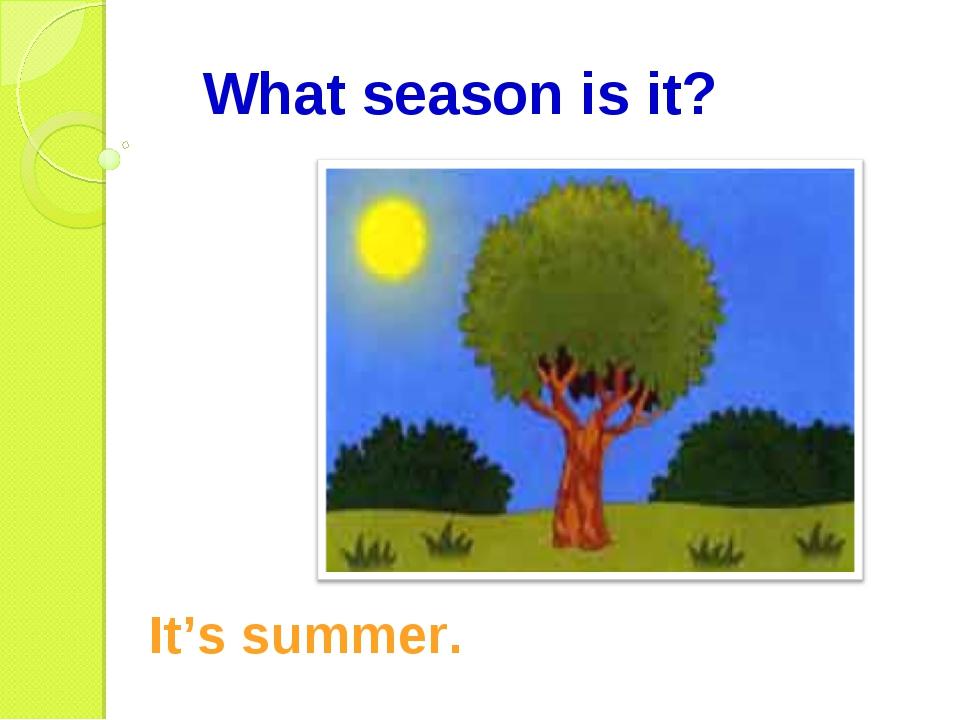 What season is it? It's summer.