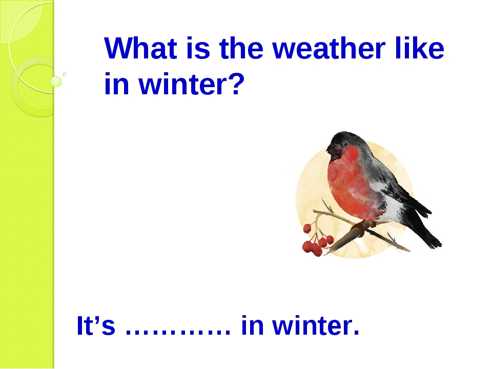 What is the weather like in winter? It's ………… in winter.