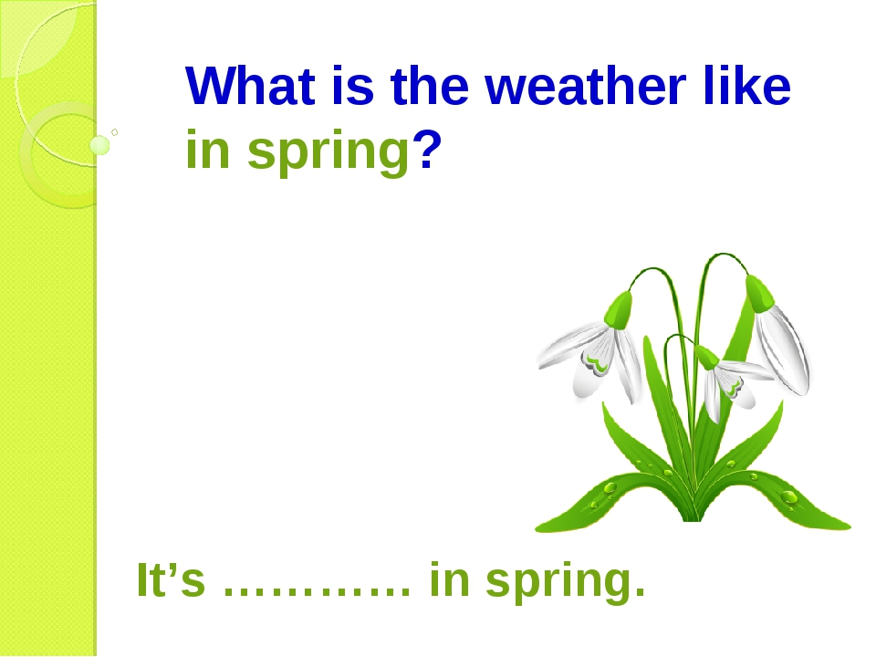 What is the weather like in spring? It's ………… in spring.